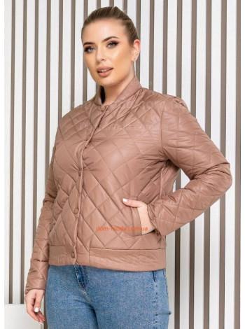 Короткая куртка женская большой размер