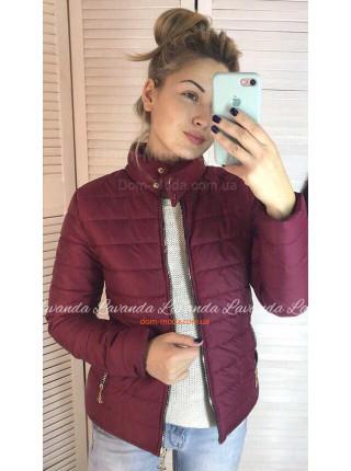 Коротка жіноча куртка із коміром