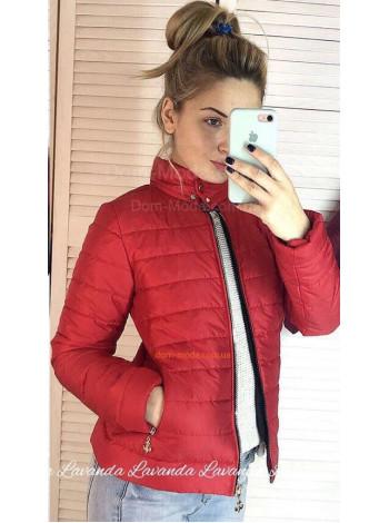 Короткая женская куртка с воротником