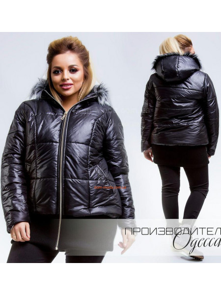 Зимові куртки недорого в магазині Dom-Moda.com.ua  3cf4f236b8c45