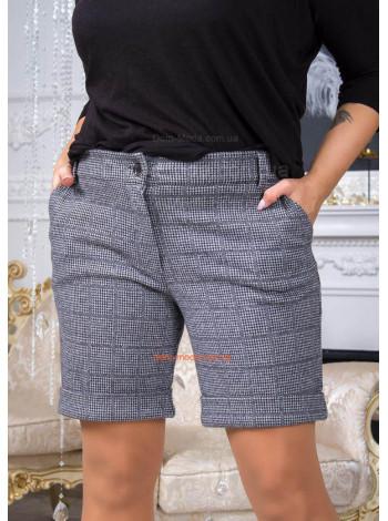 Жіночі шорти для повних