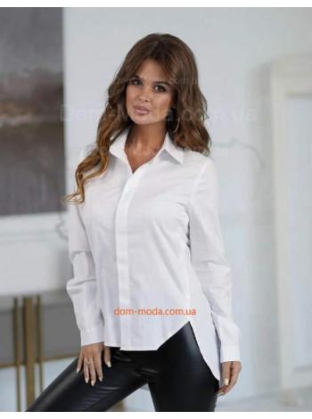 Жіноча сорочка з подовженою спинкою