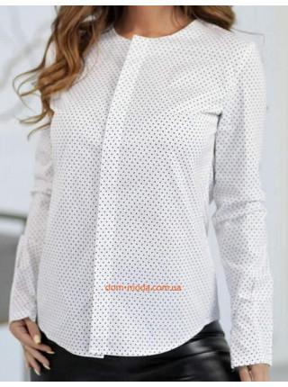Жіноча блузка в горошок з довгим рукавом